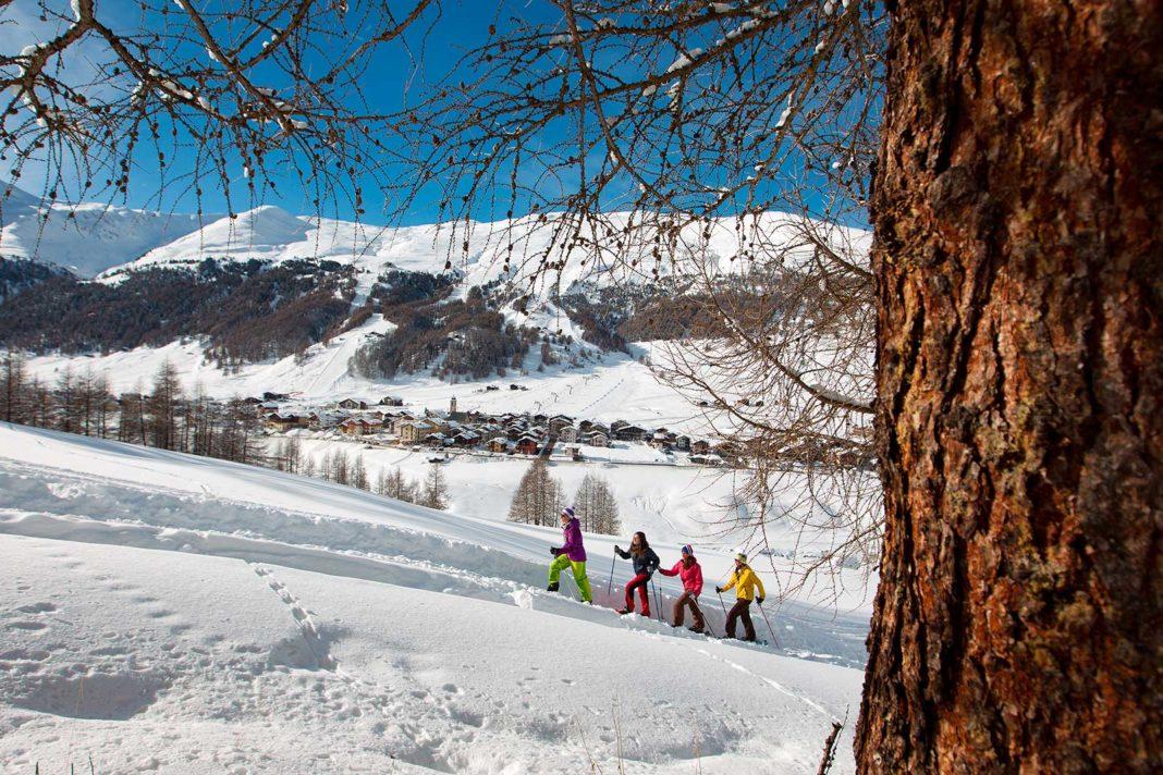 Raquetas de nieve o Trekking + Yoga nueva frontera del aire libre