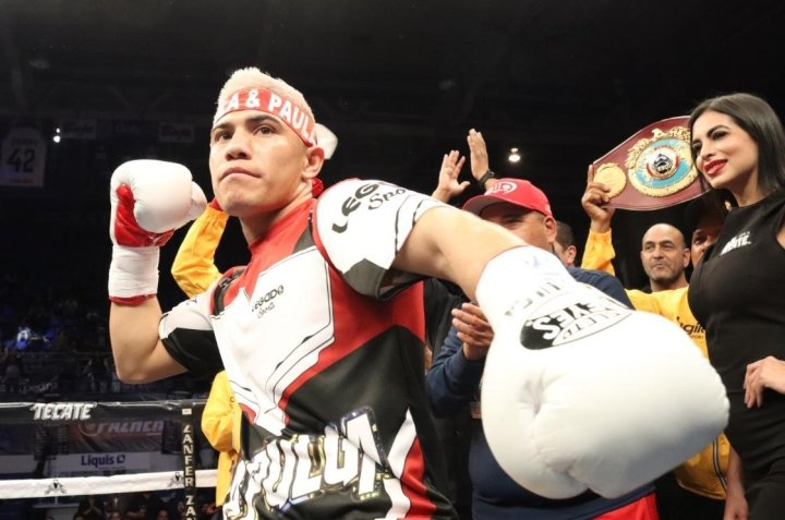 , Elwin Soto destruye a Javier Rendon en la primera ronda, Noticia Sport, Noticia Sport