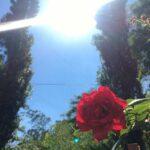 29 de agosto pronóstico del tiempo.  Odessa estará soleado y casi no soplará viento