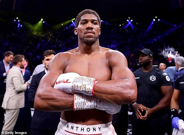 Fury había estado dispuesto a pelear contra Anthony Joshua hasta que el juez de arbitraje ordenó una revancha.