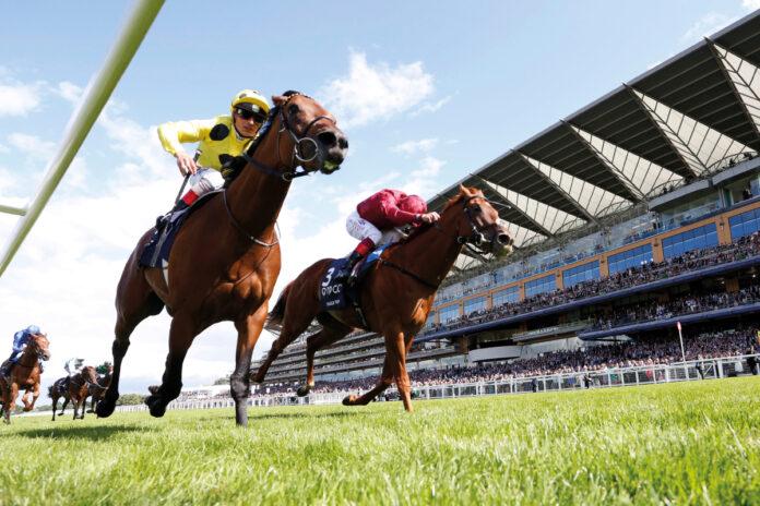 Carreras de caballos - Ascot: obtén £ 100 en apuestas gratis para el Día de los Campeones