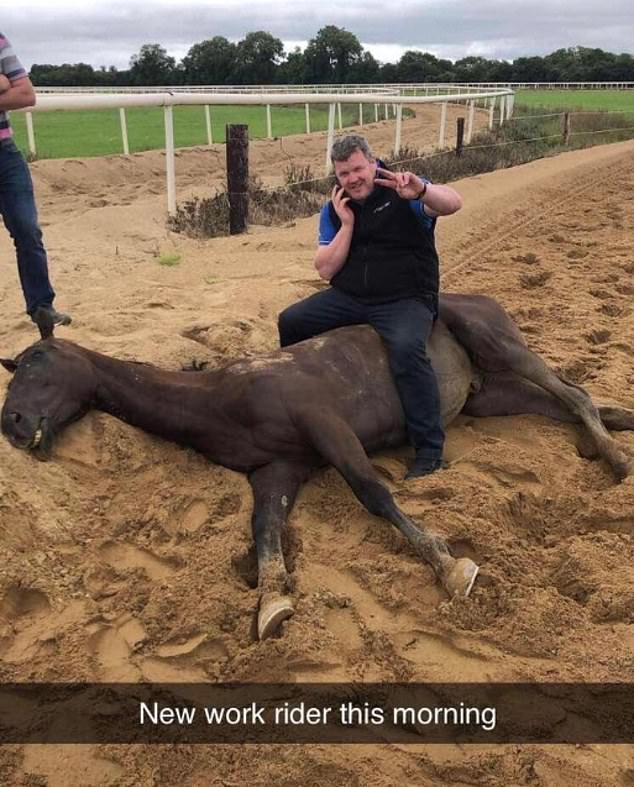 El entrenador en desgracia Gordon Elliott fue suspendido por la Junta Reguladora de Carreras de Caballos irlandeses durante seis meses después de que se fusionara una imagen de él sentado sobre un caballo muerto.