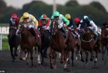 El experto en carreras de Sportsmail, Robin Goodfellow, ofrece sus consejos para las reuniones del martes